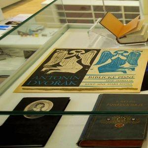 Detalle de libros dunha vitrina da exposición